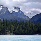 Rocky Mountain Vista by Jann Ashworth