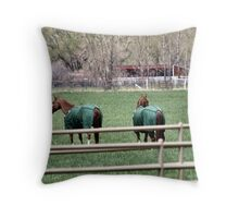 How Green is My Valley? Throw Pillow
