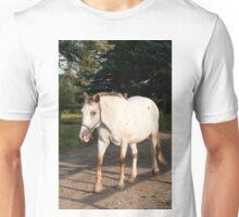Kilty - NNEP Ottawa ON Unisex T-Shirt
