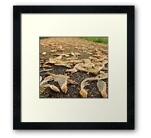 Helicopters for Daniel Framed Print