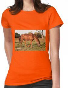 Chico - NNEP Ottawa, ON Womens Fitted T-Shirt