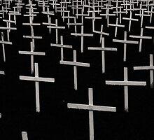 Field of Crosses by Sean Napier