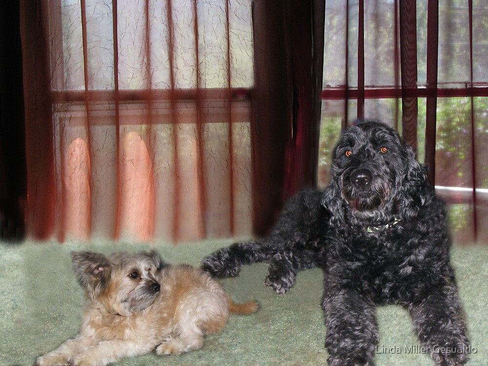 My Two Grandogs by Linda Miller Gesualdo