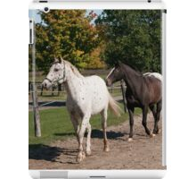 Xerox and Zoe - NNEP Ottaw, ON iPad Case/Skin