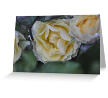 Flowers Of Nature Greeting Card