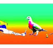 I <3 Pigeons Photographic Print