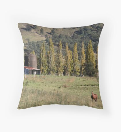 Down In the Valley !! Throw Pillow