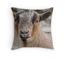 Barnyard Bully Throw Pillow