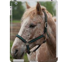 Caramel - NNEP Ottawa, ON iPad Case/Skin