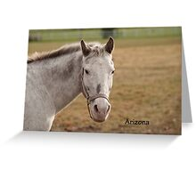 Arizona - NNEP Ottawa, ON Greeting Card