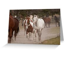 Here Comes the Girls! - NNEP Ottawa, ON Greeting Card
