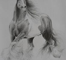 Gypsy Cob by louisegreen
