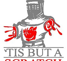 'Tis But A Scratch T Shirts, Stickers and Other Gifts Monty Python's by zandosfactry
