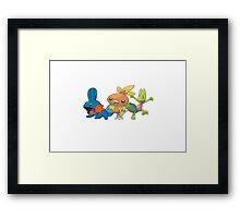 Pokemon - starter 3st gen Framed Print