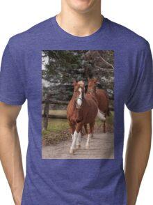 Cameron and Harry  - NNEP Ottawa, ON Tri-blend T-Shirt
