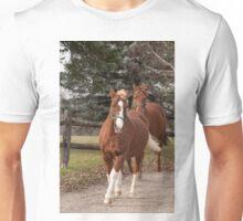 Cameron and Harry  - NNEP Ottawa, ON Unisex T-Shirt