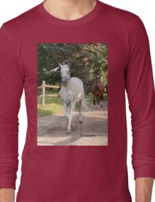 Remembering Dawson - NNEP Ottawa, ON Long Sleeve T-Shirt