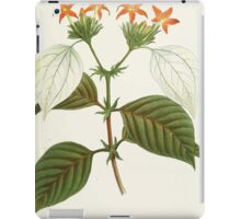 Familiar Flowers of India With Colored Plates, Lena Lowis 0021 Mussoenda Macrophylla iPad Case/Skin