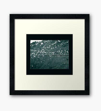 untitled droplets Framed Print
