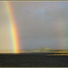 yup! it'a a rainbow! by Chris Cohen