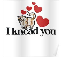 I knead you funny kitty cat Poster