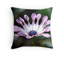 Beautiful whirl Throw Pillow