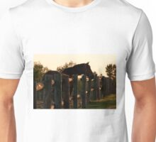 Early Morning Capture (view large) Unisex T-Shirt
