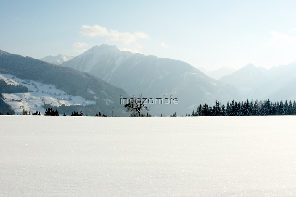 Minimal - Austrian Alps  by Joel  Staples