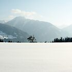 Minimal - Austrian Alps  by Joel  Staples