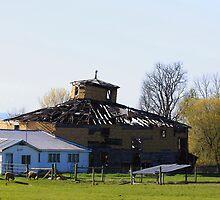 Round Barn Of Yester Year by Deborah  Benoit