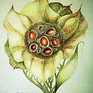 Floribunda Mirifus by Helena Wilsen - Saunders