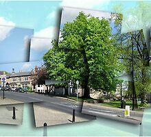 Postcards from Harrogate by neilk