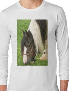Gypsy Vanner Horse Long Sleeve T-Shirt