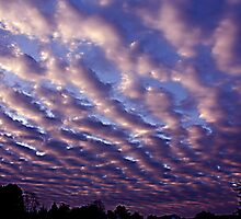 Morning sky over Madera 4/30/10 by creepy1