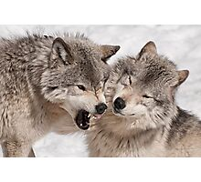 Friendly Fire Photographic Print
