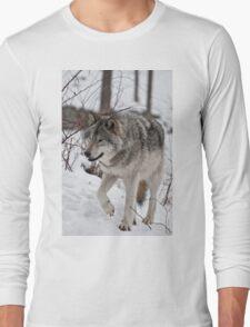 Alterior Motive Long Sleeve T-Shirt