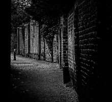 Into the Alley by Karen  Betts