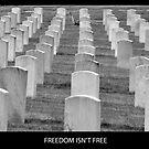 Freedom isn't Free by DiamondCactus