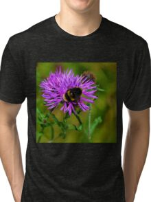 Bumble Bee on flower..... Tri-blend T-Shirt