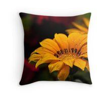 A colorful bokeh Throw Pillow