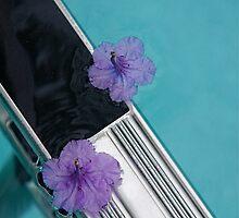 tip toeing by Joanne Hamblin