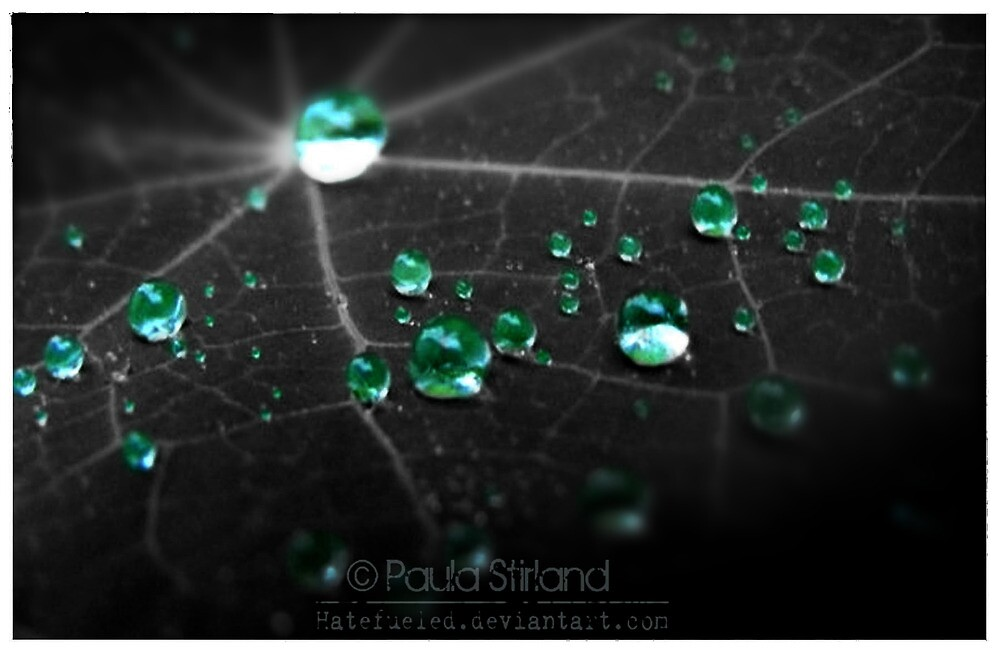 Collecting Emeralds by Gozza