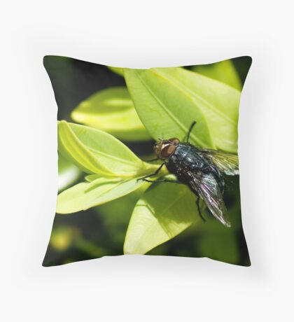 Fred the Fly Throw Pillow