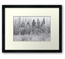 Wintry Roadside Framed Print