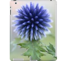 The touch iPad Case/Skin