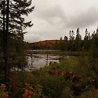 northern Ontario by creativegenious