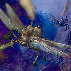 Two dragonfly-class aerial machines square off. by Carol and Mike Werner