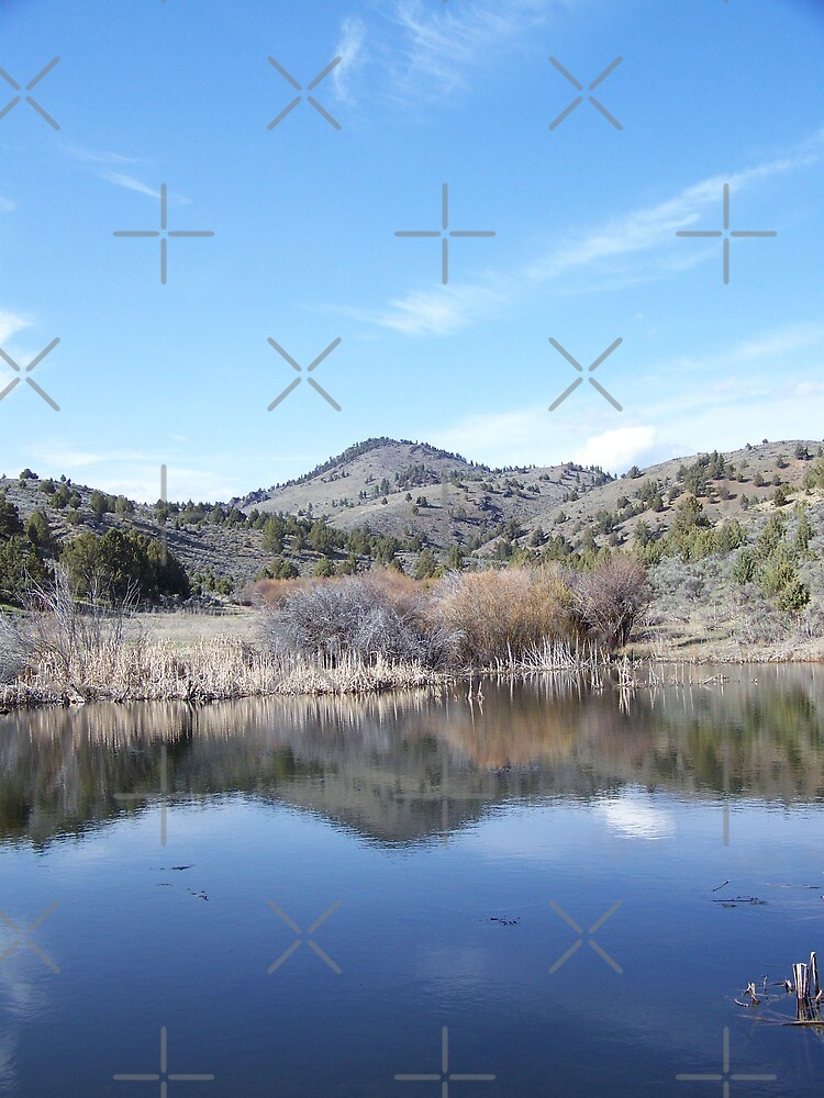 Cottonwood Buttes Reflection by Betty  Town Duncan