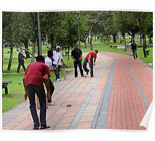 Cricket In Quito, Ecuador Poster
