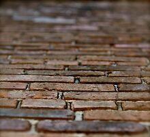 New Orleans Brickwork by Missy Lamb